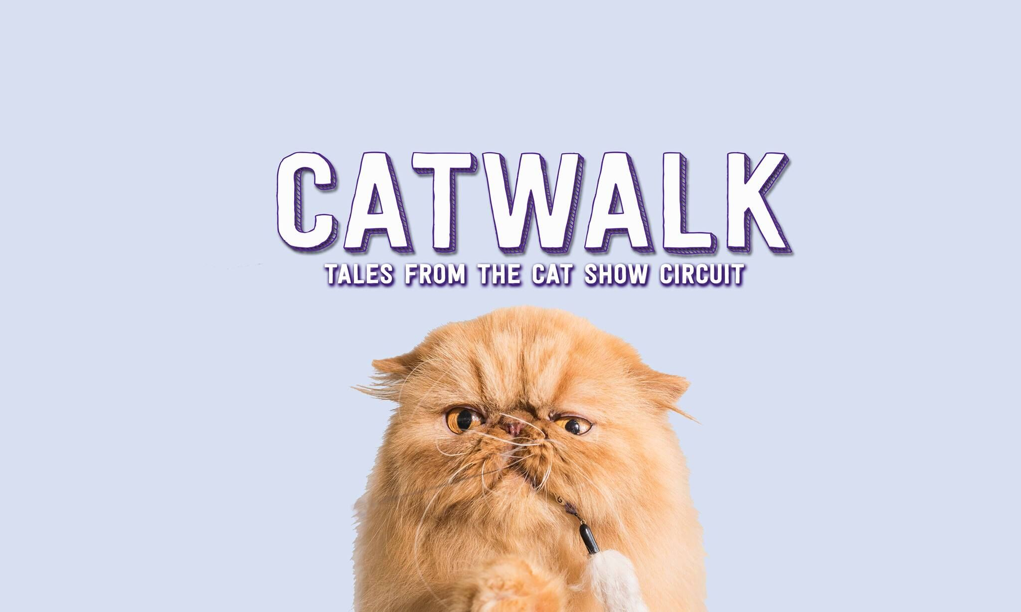 Catwalk: Tales From the Cat Show Circuit