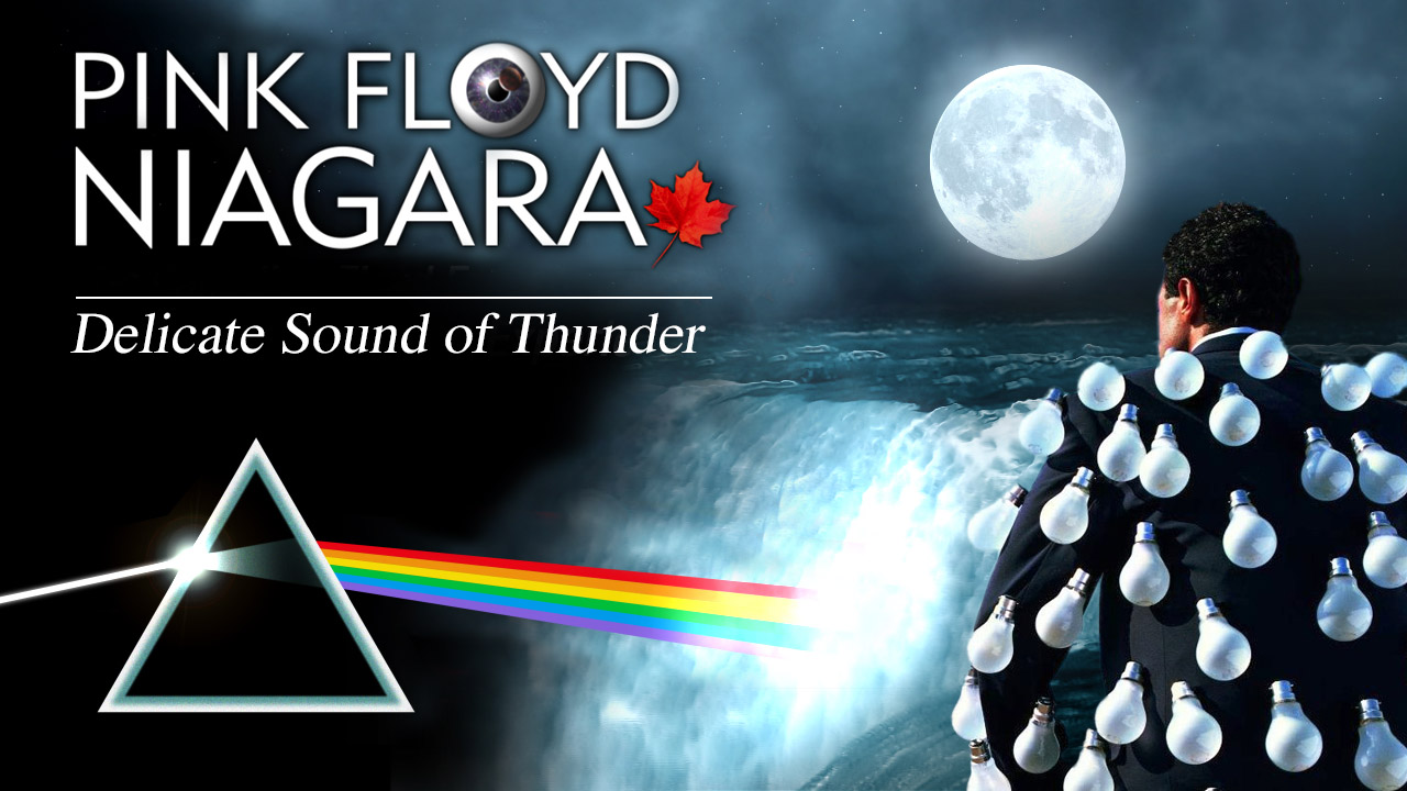 Pink Floyd Niagara - THE DELICATE SOUND OF THUNDER