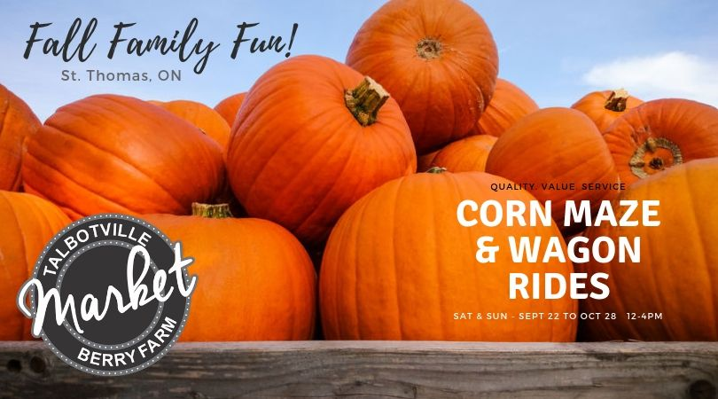 Talbotville Fall Family Fun Corn Maze & Wagon Rides (Any Day Pass)