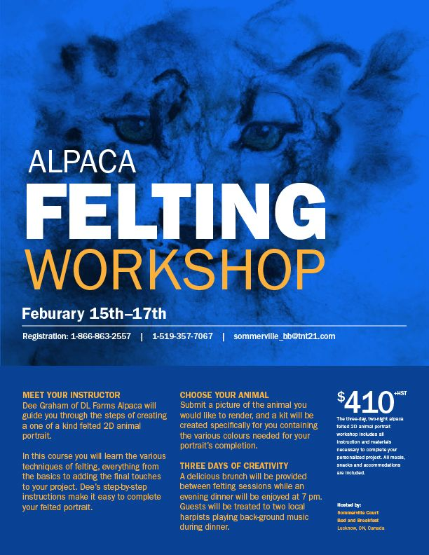 Alpaca Felting Workshop