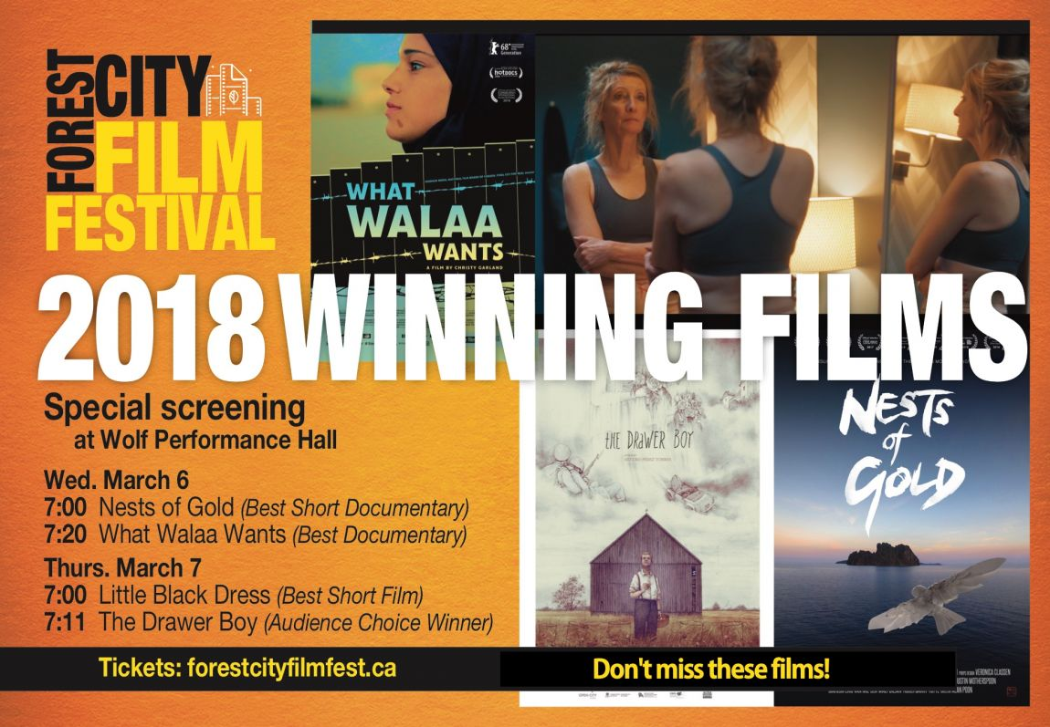 Forest City Film Festival Winning Documentaries 2018 Screening