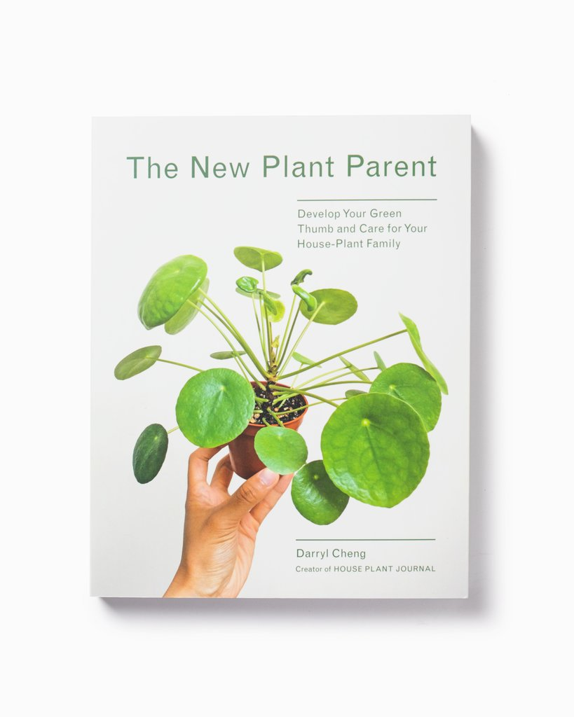 Indigo Presents: The New Plant Parent Workshop