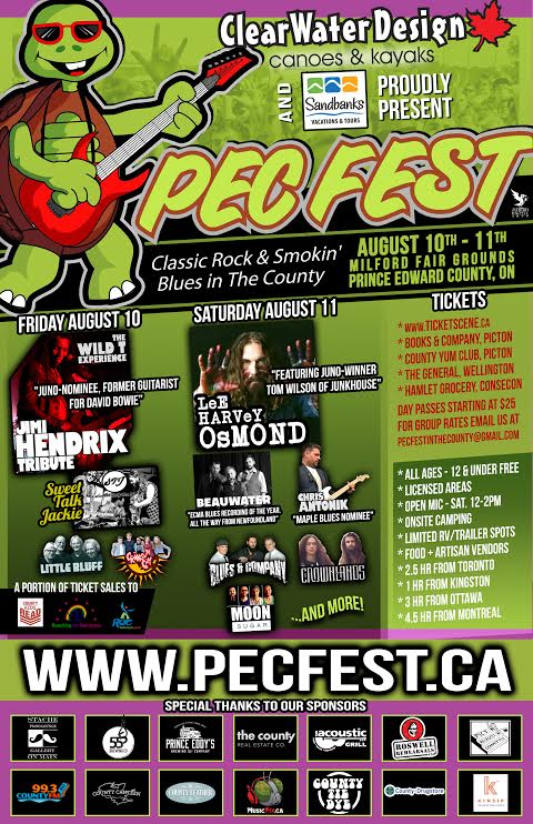PEC FEST 2018- Friday Pass